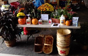 Bowensville Farm and Nursery Container Gardening Course